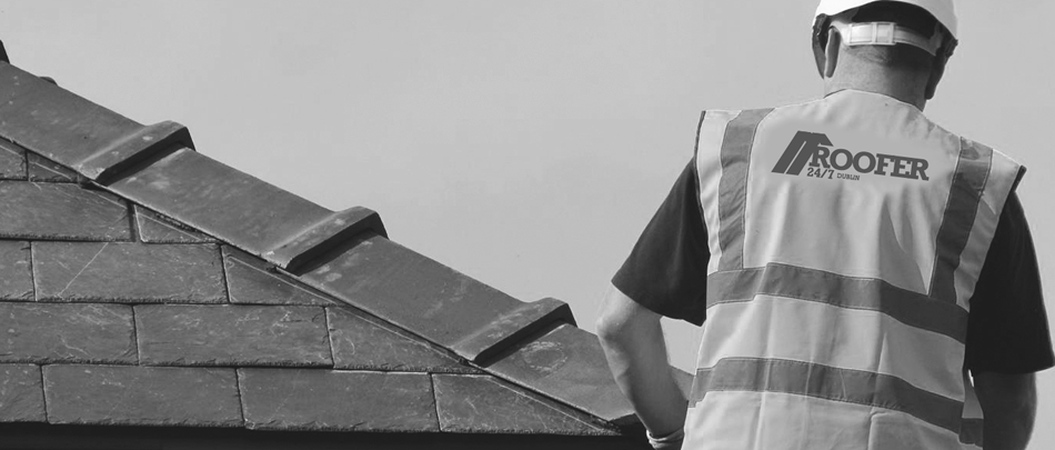 Roofer Leixlip